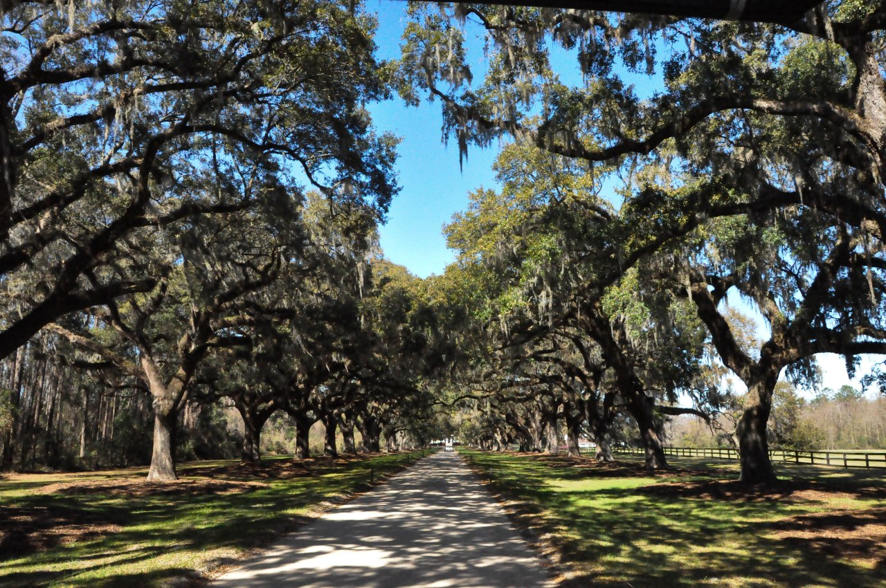 Gullah Culture at Boone Hall Plantation