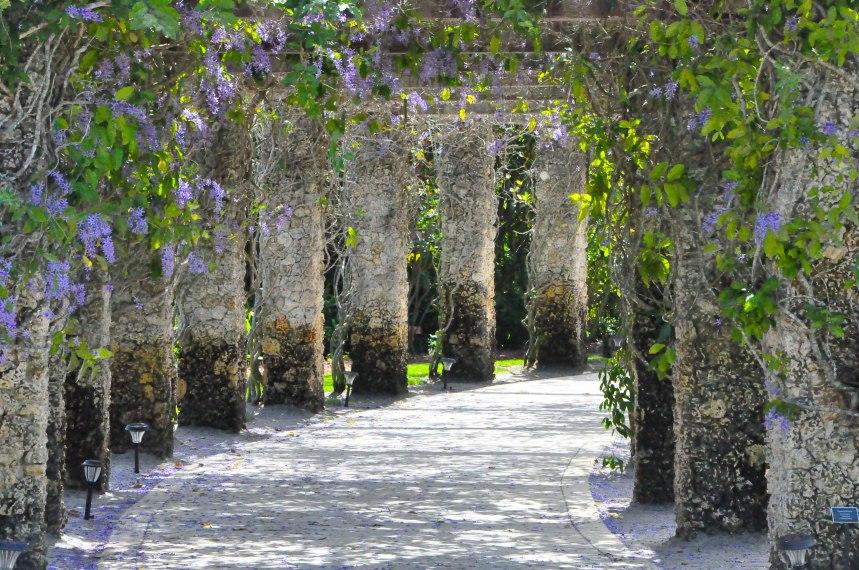 Botanical Gardens-0055