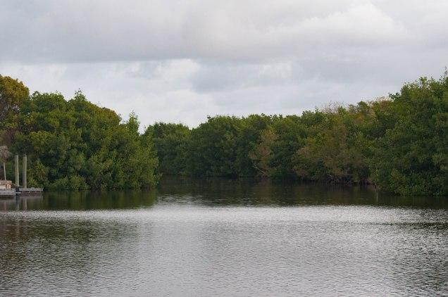 Everglades-0150