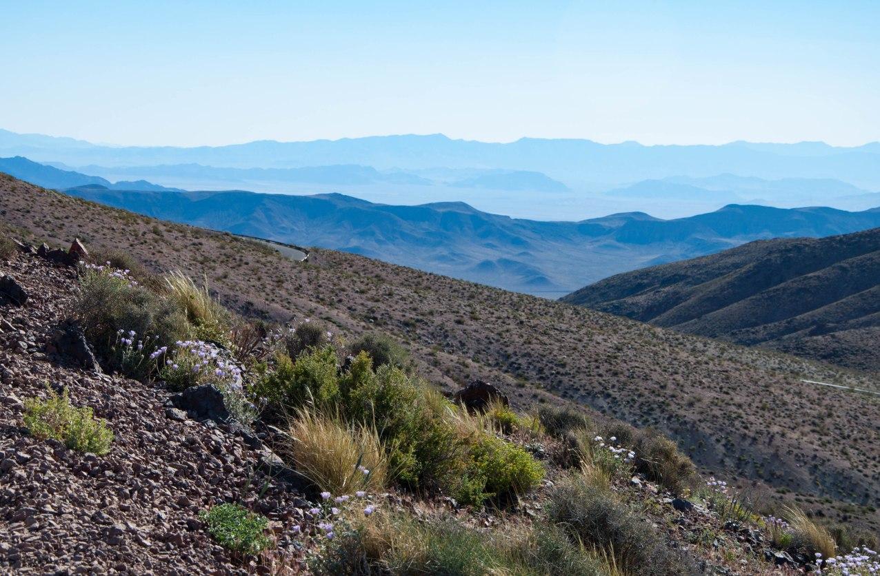 Death Valley-0244